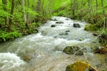kamena gora- reke