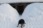 Zima na Kamenoj Gori 23