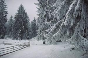 Zima na Kamenoj Gori.