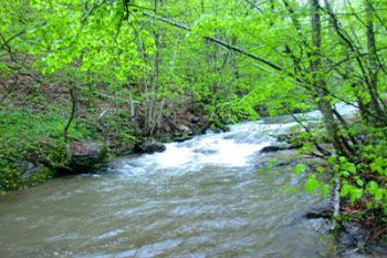 Bogate reke, čiste vode, prepune ribom, prosto vas privlače da se oprobate u ribolovu.
