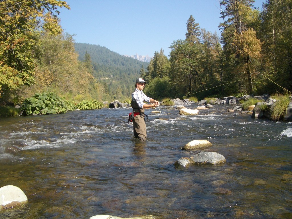 Relaksacija i rekreacija, idealan opis za pecanje na Kamenoj Gori.