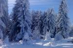 Zima na Kamenoj Gori 3