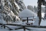 Zima na Kamenoj Gori 26
