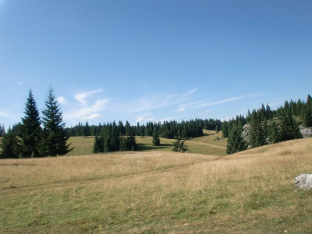 Kamena Gora, planina u Srbiji.