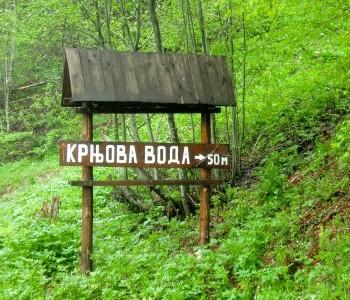 Još samo 50m desno i eto osveženja na Krnjovoj vodi na Kamenoj Gori.