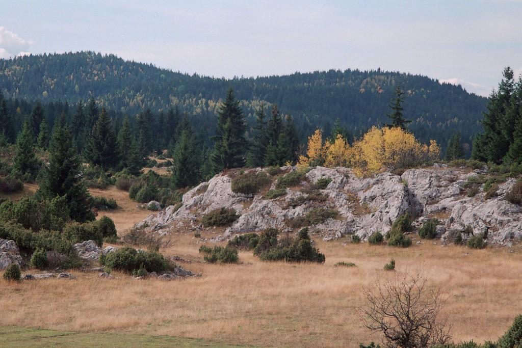 Krečnjači masiv sa sobom nosi skrivene lepote na Kamenoj Gori.