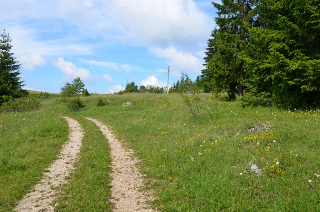 Kamena Gora, planinska staza.